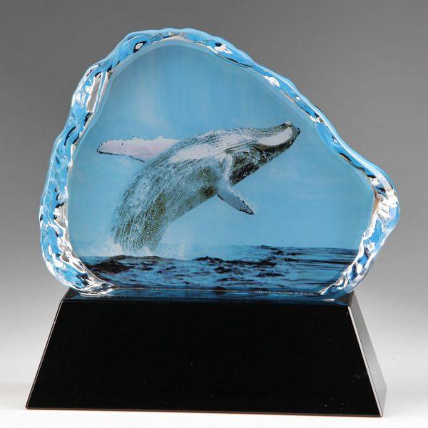 coated sublimation crystal whale award